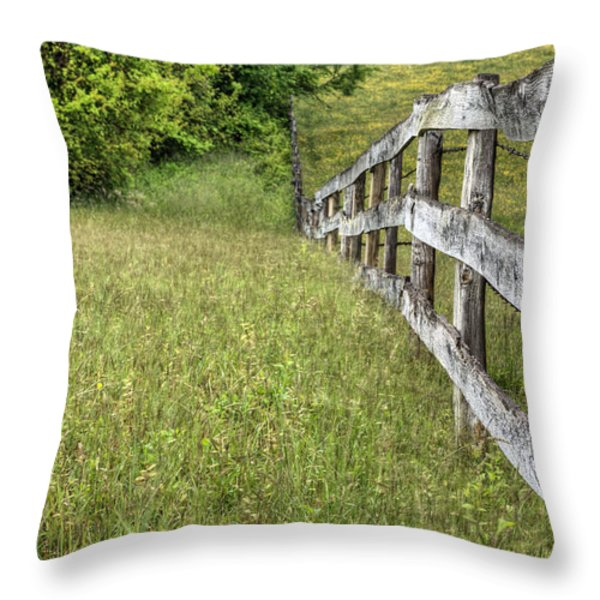 Into the Distance  Throw Pillow by JC Findley
