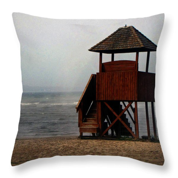 Into The Elements Of Nature Throw Pillow by Ms Judi