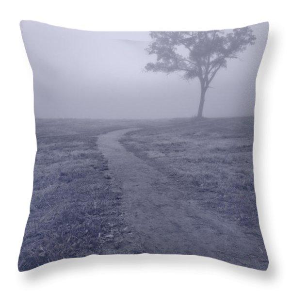 Into The Mist BW Throw Pillow by Steve Gadomski