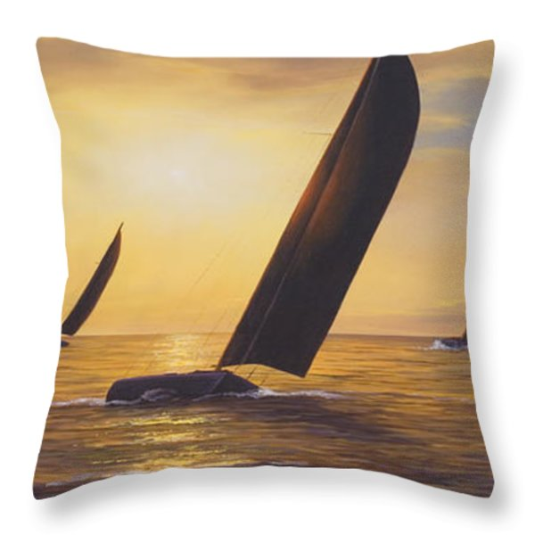 Into The Sunset - Panoramic  Throw Pillow by Diane Romanello