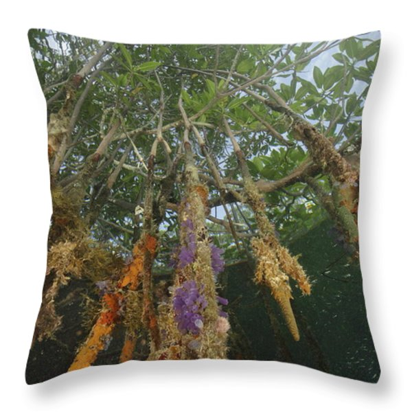 Invertebrate Life Growing On The Roots Throw Pillow by Tim Laman