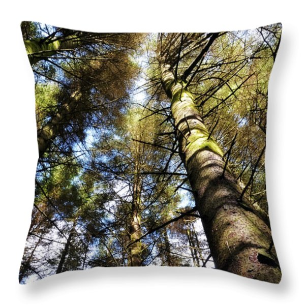 Invitation To The Waltz Throw Pillow by Jenny Rainbow