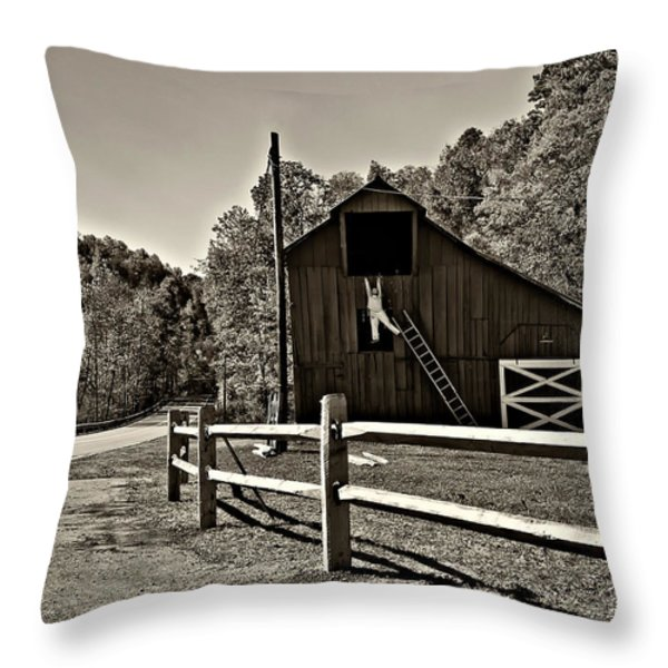 Involved In One's Work Sepia Throw Pillow by Steve Harrington