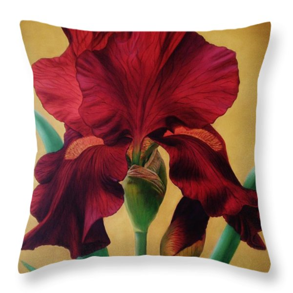 Iris Throw Pillow by Paula L