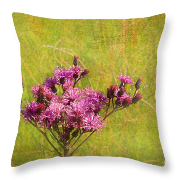 Ironweed in Autumn Throw Pillow by Judi Bagwell