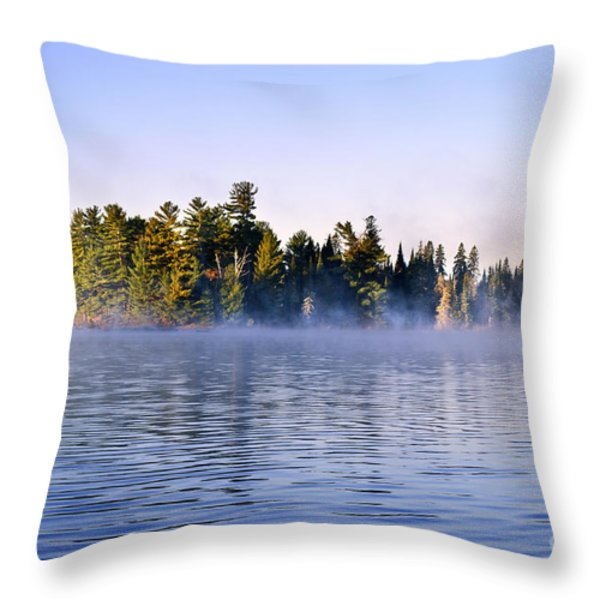 Island in lake with morning fog Throw Pillow by Elena Elisseeva