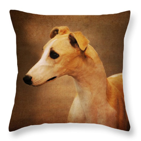 Italian Greyhound Throw Pillow by Jai Johnson