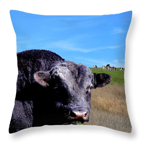 Its A Bulls Life Throw Pillow by Wingsdomain Art and Photography
