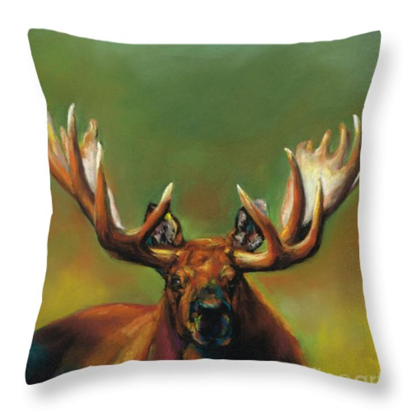 Its All About The Rack Throw Pillow by Frances Marino
