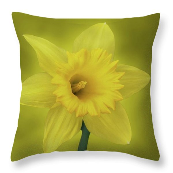 It's Spring Throw Pillow by Sandy Keeton