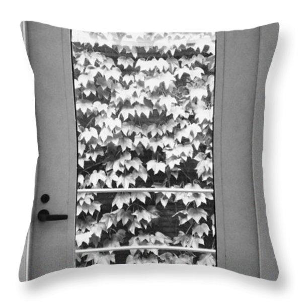 Ivy Door Throw Pillow by Anna Villarreal Garbis