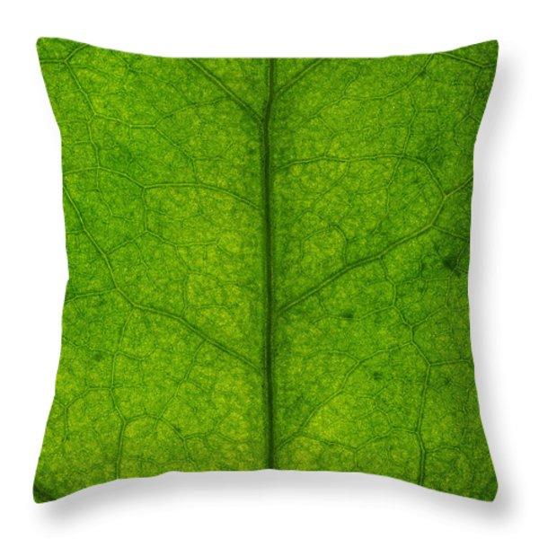 Ivy Leaf Throw Pillow by Steve Gadomski