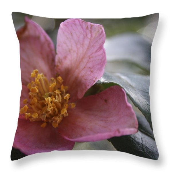 January Camelia 2 Throw Pillow by Teresa Mucha