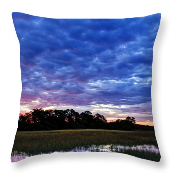 January Morning Throw Pillow by Phill  Doherty