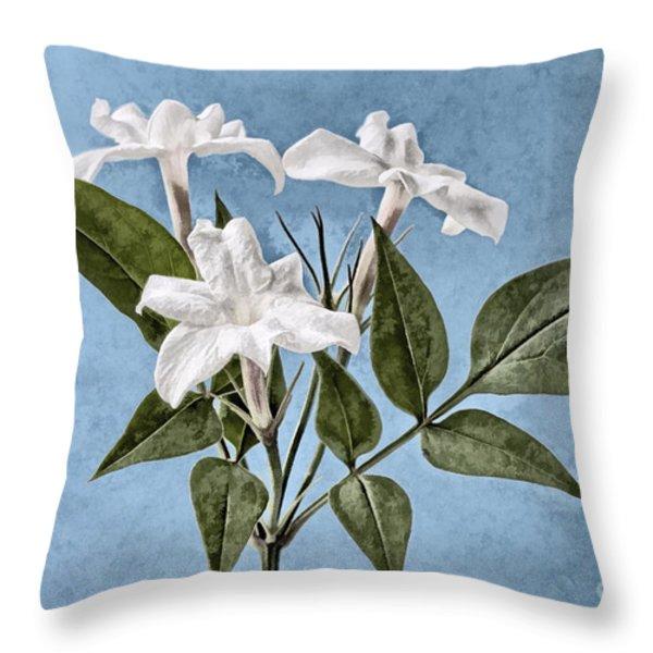 Jasminum officinale Throw Pillow by John Edwards