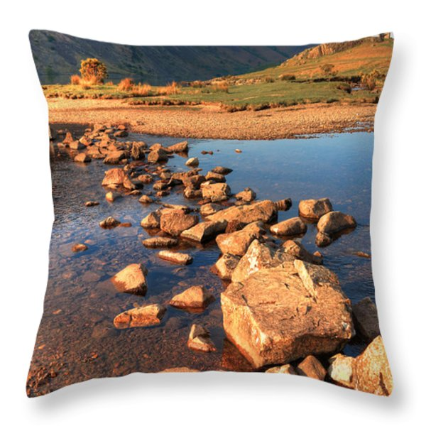 Jumping Stones Throw Pillow by Svetlana Sewell
