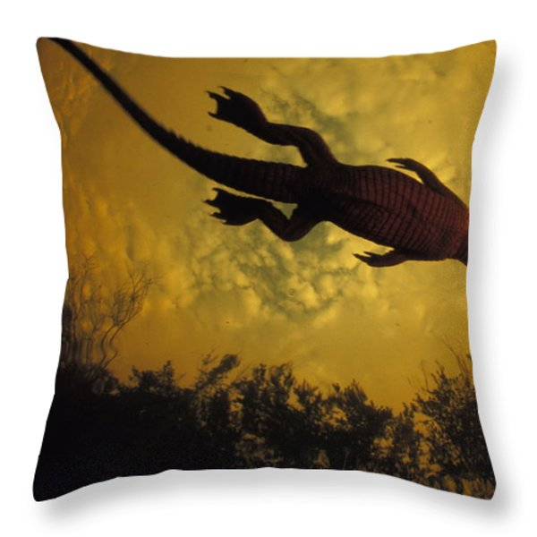 Just Days-old, A Nile Crocodile Makes Throw Pillow by Michael Nichols