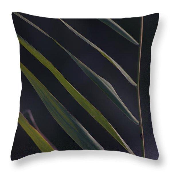 Just Grass Throw Pillow by Heiko Koehrer-Wagner