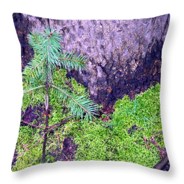 Just Starting Out  Throw Pillow by Will Borden
