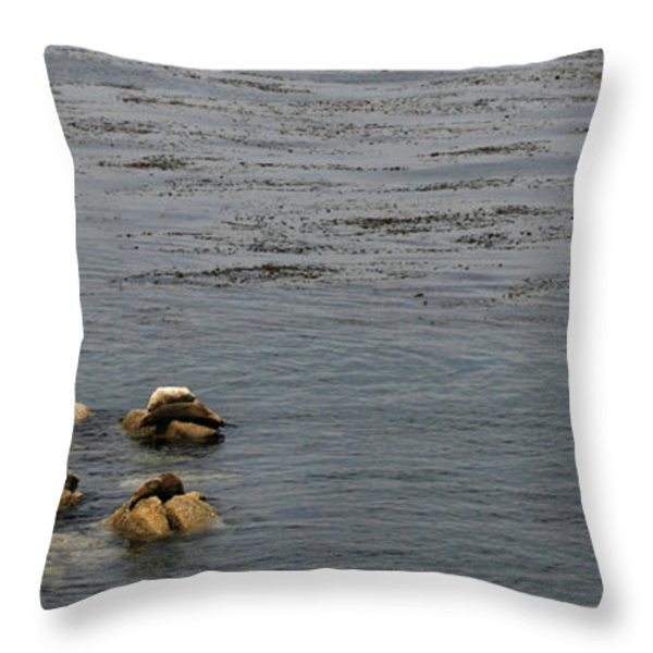 Kayakers and Seal Lions Throw Pillow by Marilyn Hunt