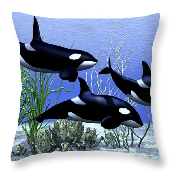 Killer Whales Hunt Together Throw Pillow by Corey Ford
