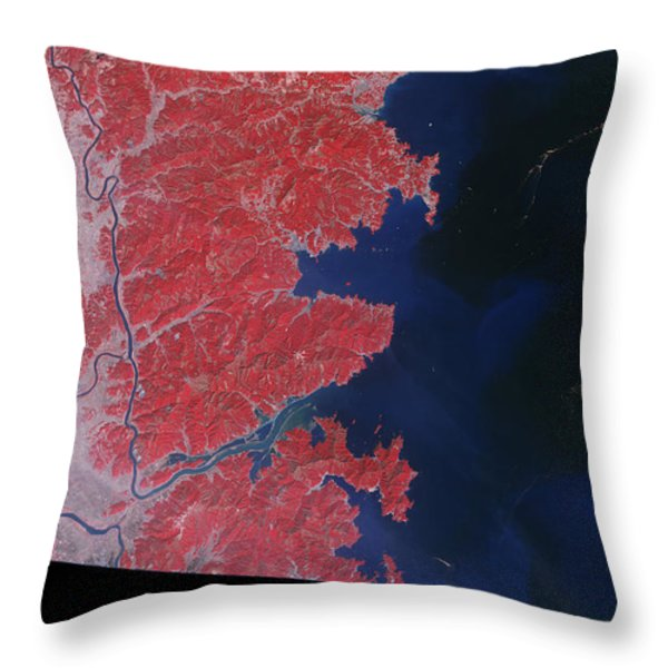 Kitakami River, Japan, After Tsunami Throw Pillow by National Aeronautics and Space Administration
