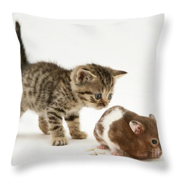 Kitten And Hamster Throw Pillow by Jane Burton
