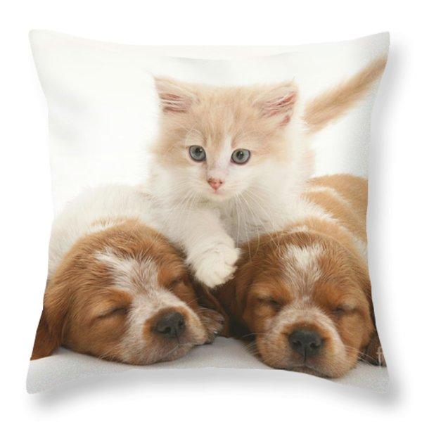 Kitten And Puppies Throw Pillow by Jane Burton