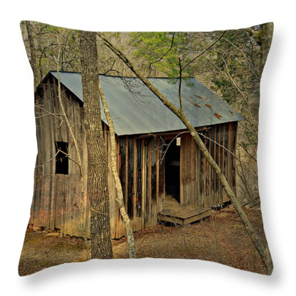 Klepzig Mill 3 Throw Pillow by Marty Koch