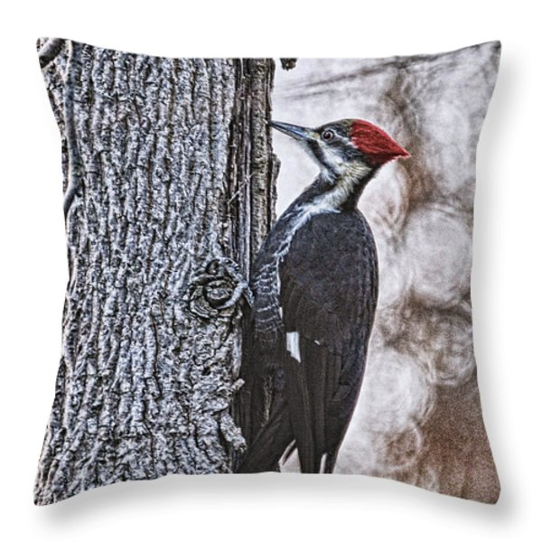 Knock Knock Throw Pillow by Lois Bryan