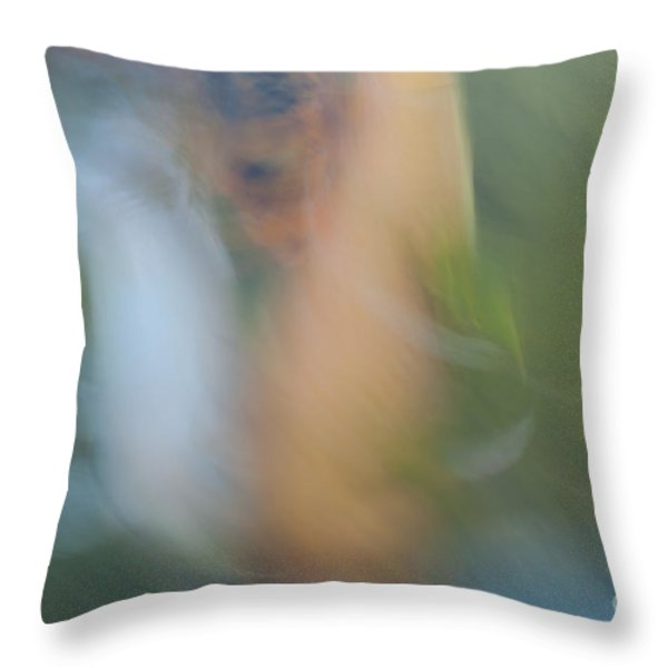 koi fish 02 Throw Pillow by Catherine Lau