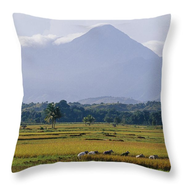 Laborers In A Rice Field Work Throw Pillow by Steve Raymer