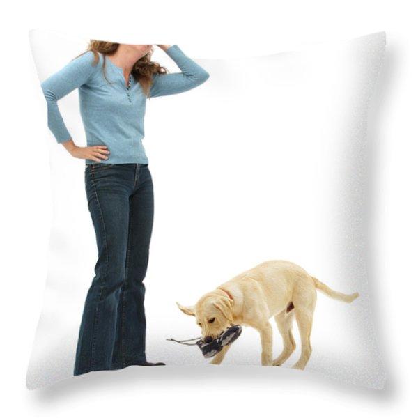 Labrador Golden Retriever Pup Chewing Throw Pillow by Mark Taylor