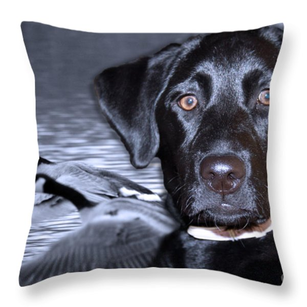 Labrador Retriever Thoughts  Throw Pillow by Cathy  Beharriell