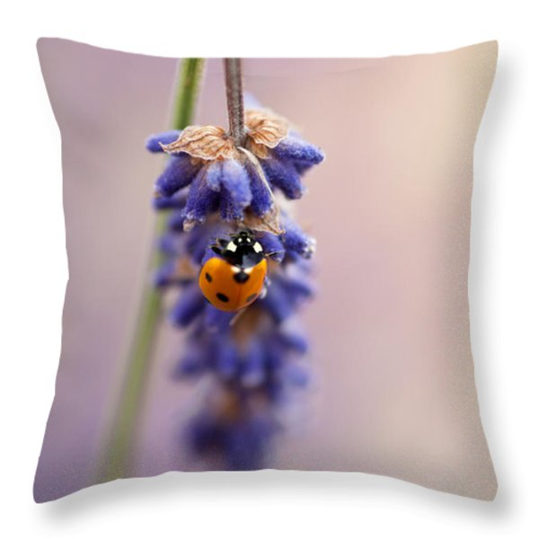Ladybird And Lavender Throw Pillow by John Edwards