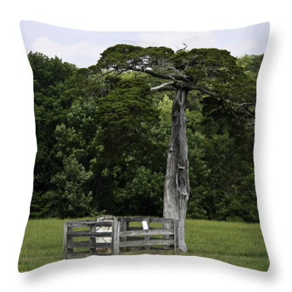 Lafayette Meeks Cemetery Appomattox Virginia Throw Pillow by Teresa Mucha
