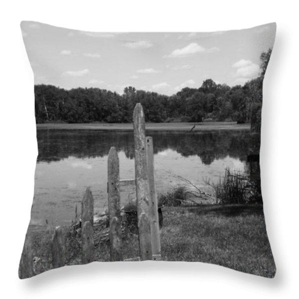 Lake Time Throw Pillow by Anna Villarreal Garbis