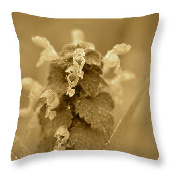 Lamium In Sepia Throw Pillow by JD Grimes