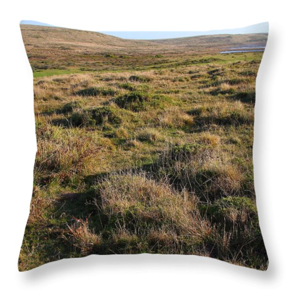 Landscape With Cow Grazing In The Field . 7D9942 Throw Pillow by Wingsdomain Art and Photography