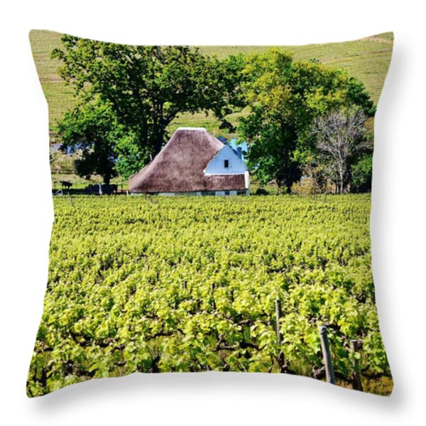 Landscape with vineyard Throw Pillow by Werner Lehmann