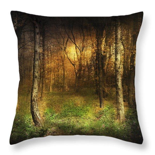 Last Rays Throw Pillow by Svetlana Sewell