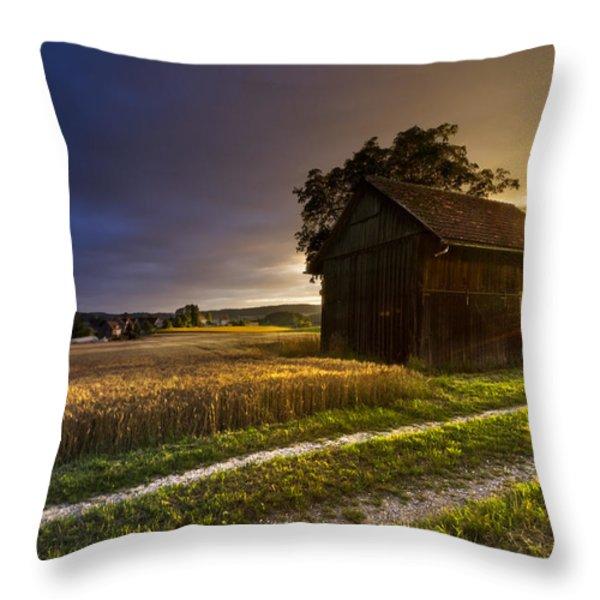 Last Sigh Throw Pillow by Debra and Dave Vanderlaan