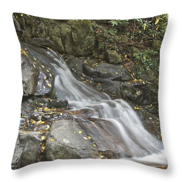 Laurel Falls 6230 Throw Pillow by Michael Peychich