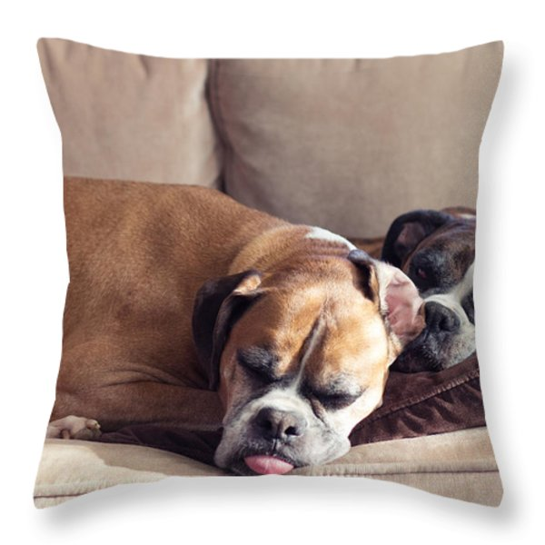 Lazy Boxers Throw Pillow by Stephanie McDowell