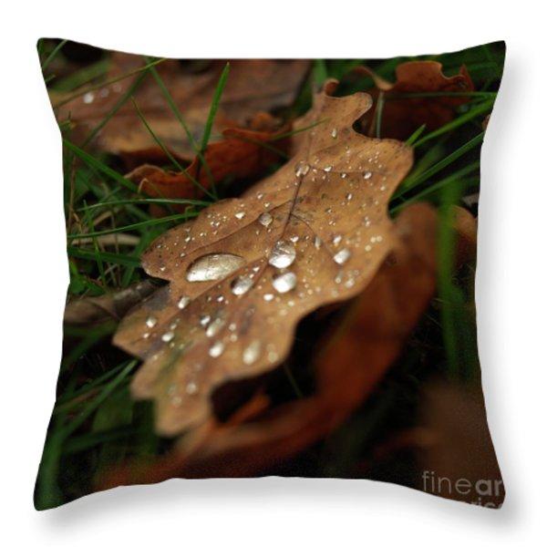 Leaf in autumn. Throw Pillow by BERNARD JAUBERT