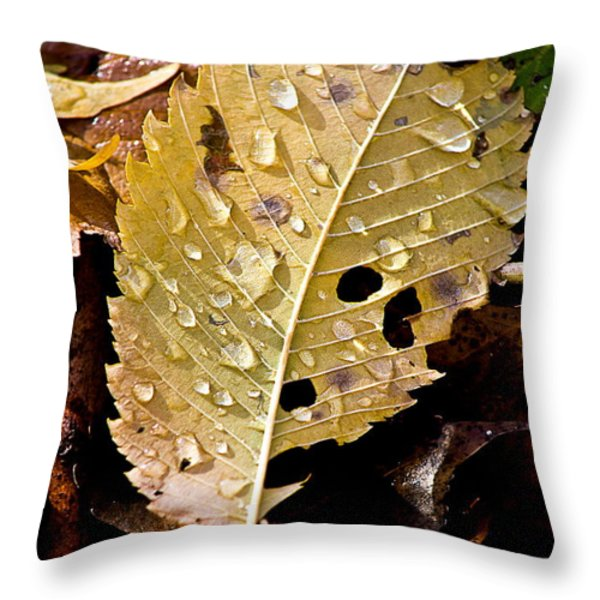 Leafy Tears Throw Pillow by Burney Lieberman