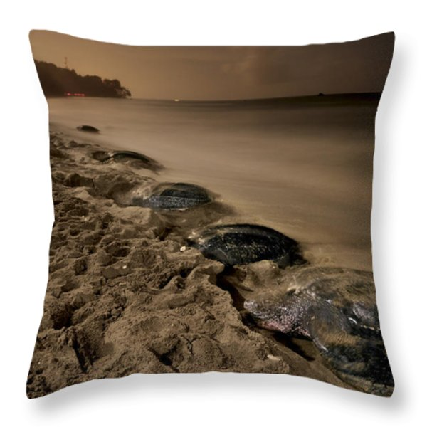 Leatherback Turtles Nesting On Grande Throw Pillow by Brian J. Skerry