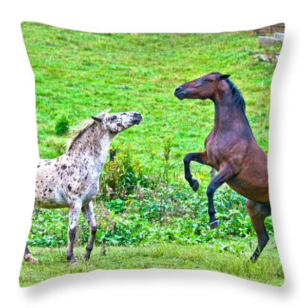 Leopard V Standardbred Throw Pillow by Betsy A  Cutler