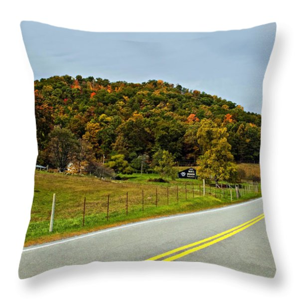Let It Roll paint  Throw Pillow by Steve Harrington