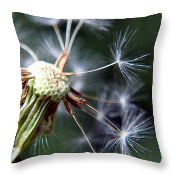 Letting Go  Throw Pillow by Heather Applegate
